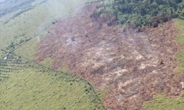Satgas Karhutla Riau Berhasil Padamkan Kebakaran di Pulau Rupat